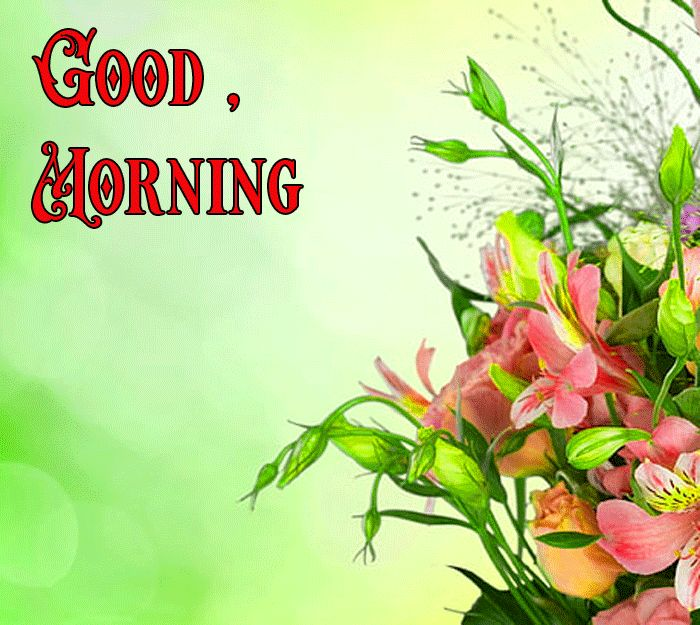 good morning flowers pictures