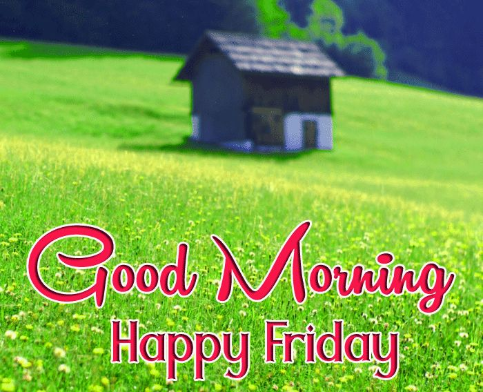 good morning images happy friday