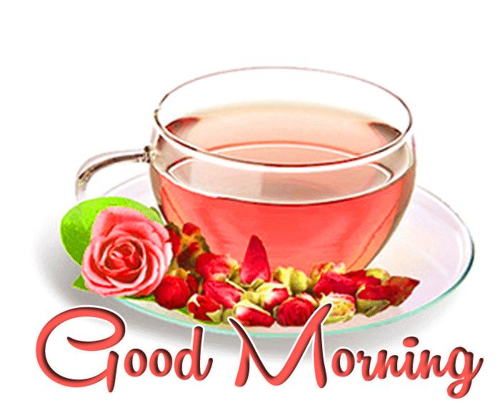 good morning with tea images