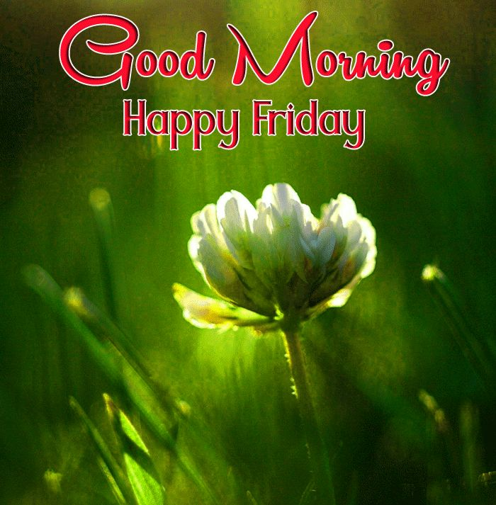 happy friday good morning images