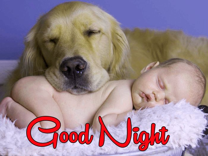 Cute Baby Good Night photo free download