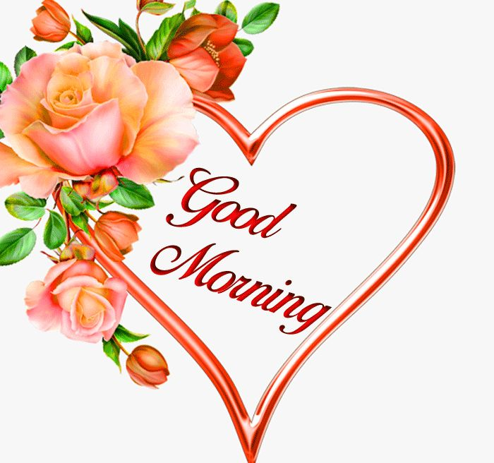 Good Morning wallpaper with flower and love hd download