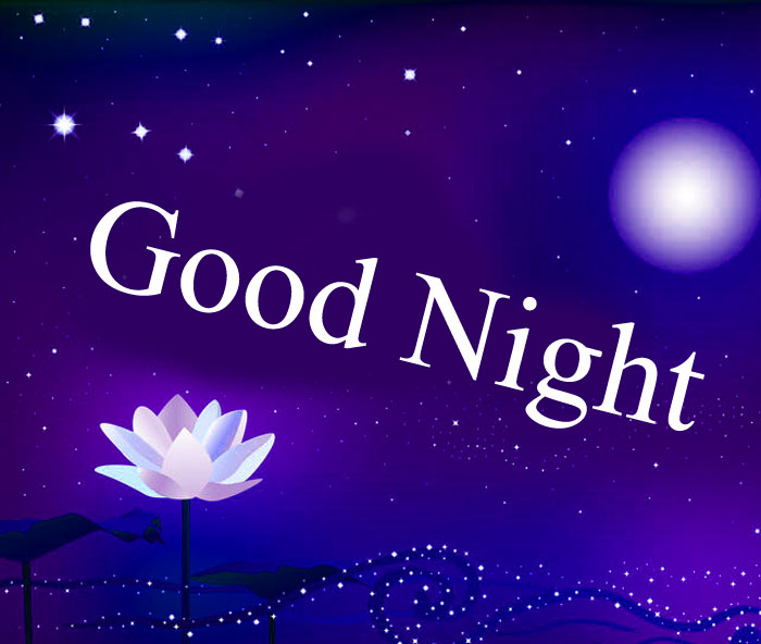 Good Night lotus and moon images hd download