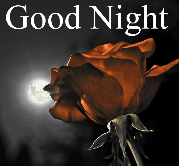 Good Night moon res rose images hd download