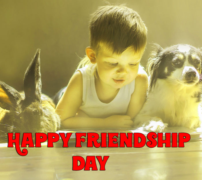 amazing Happy Friendship Day pics hd free download