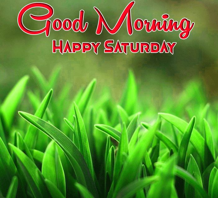 laatest Good Morning Happy Saturday images