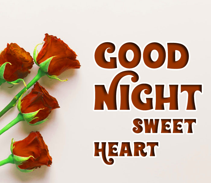 pretty red rose Good Night Sweet Heart images hd