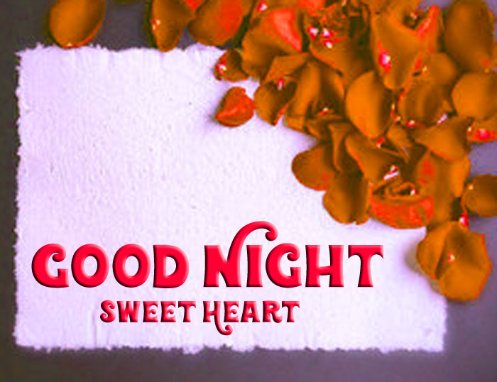 red rose Good Night Sweet Heart images hd download