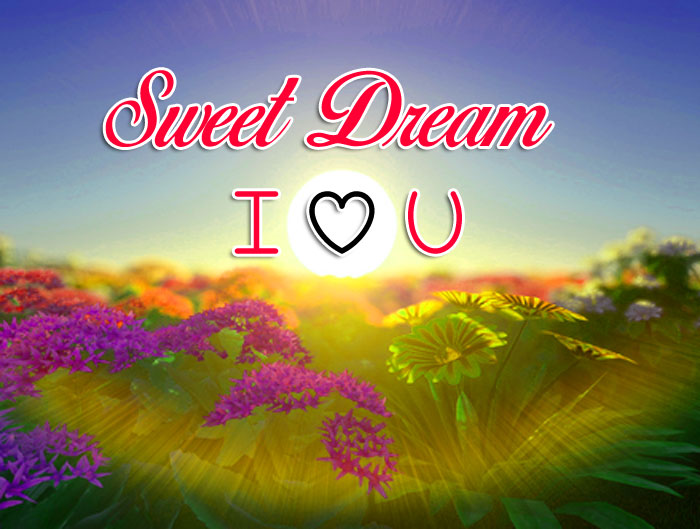 Sweet Dream I Love You sunset images