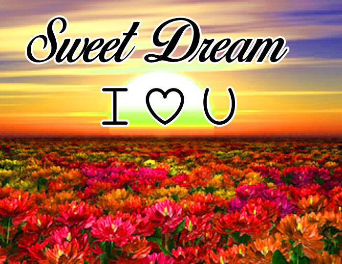 colorful flower Sweet Dream I Love You images hd