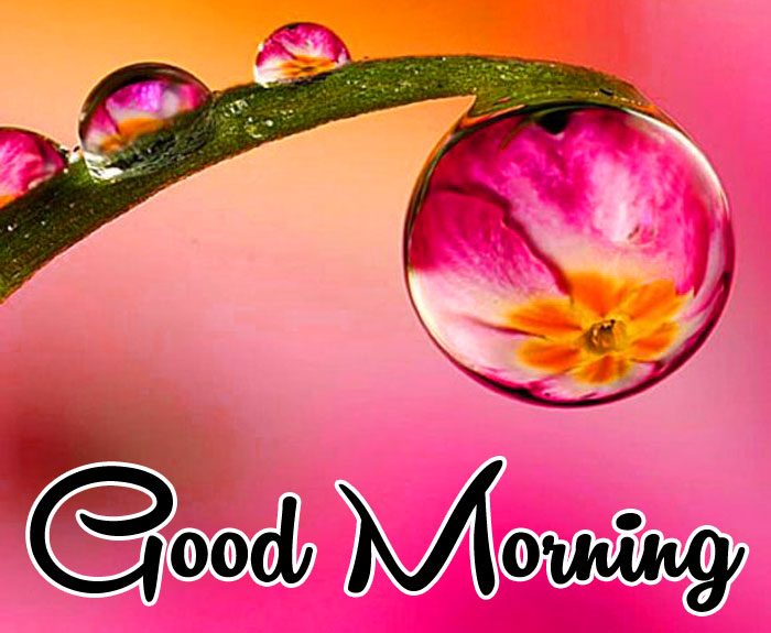 drops of water Good Morning images hd