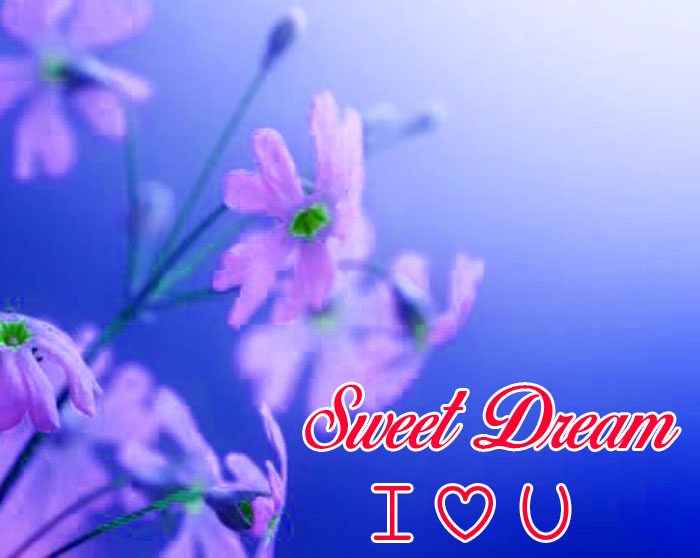 flower and nature Sweet Dream I Love You images