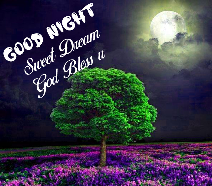 tree and moon Good Nihgt Sweet Dream God Bless You images