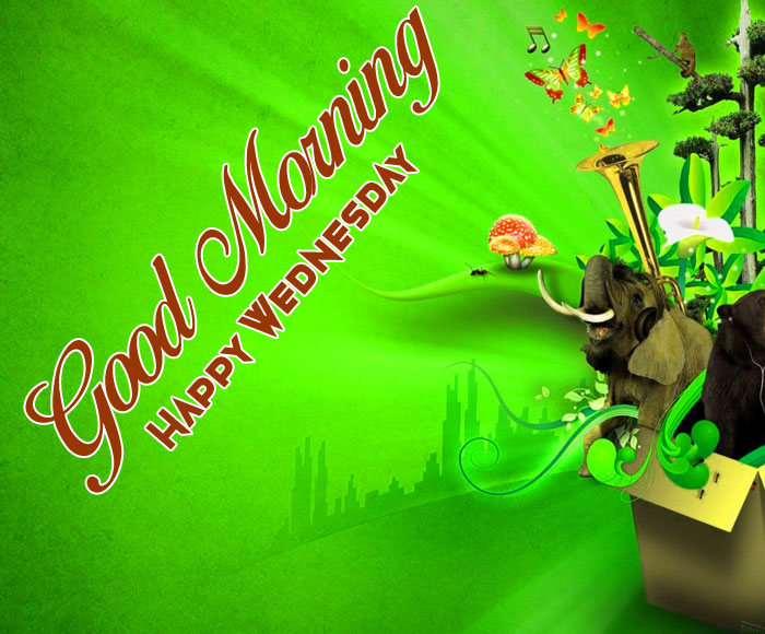 latest green Good Morning Happy Wednesday images hd