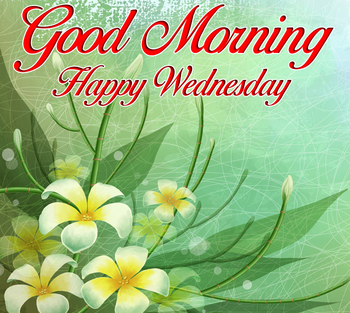 light green Good Morning Happy Wednesday images hd