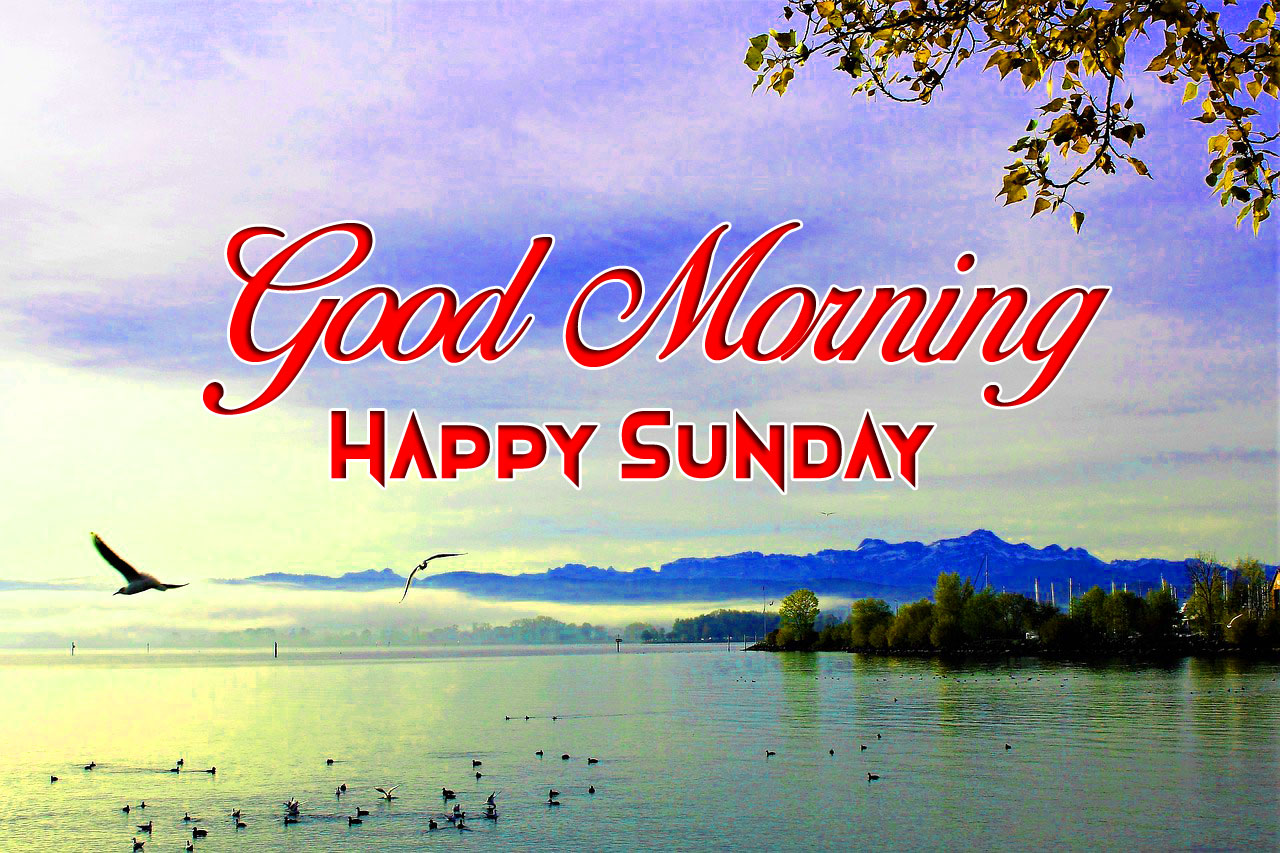 nature Good Morning Happy Sunday images hd
