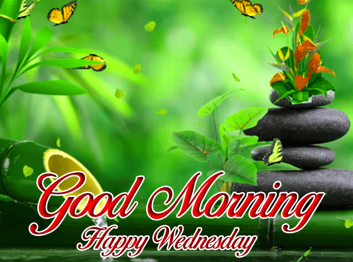 new Good Morning Happy Wednesday images hd