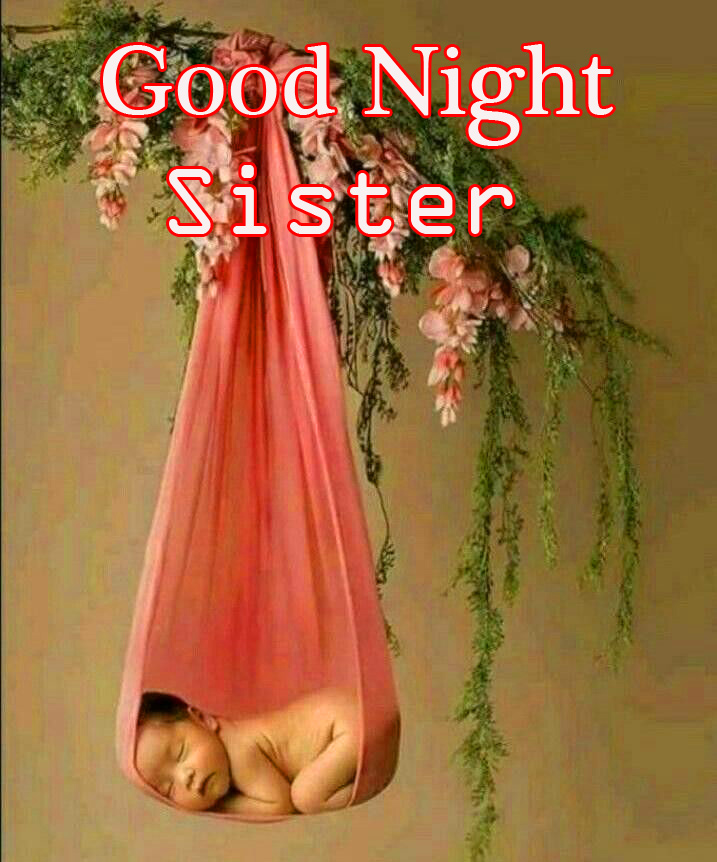 Baby Girl Hanging with Good Night Sister Wish