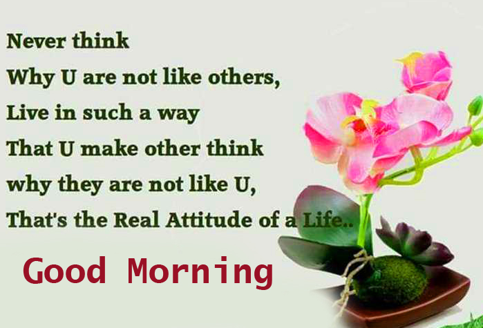 Best Good Morning Quotes Picture