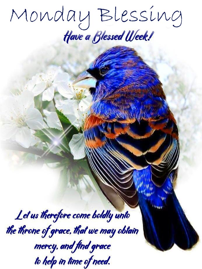 Bird with Monday Blessing Wish