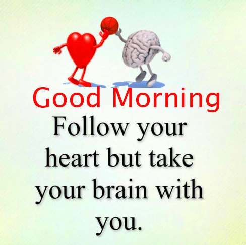 Brain and Heart Quotes Good Morning Image