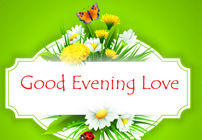 Bright Good Evening Love Floral Image