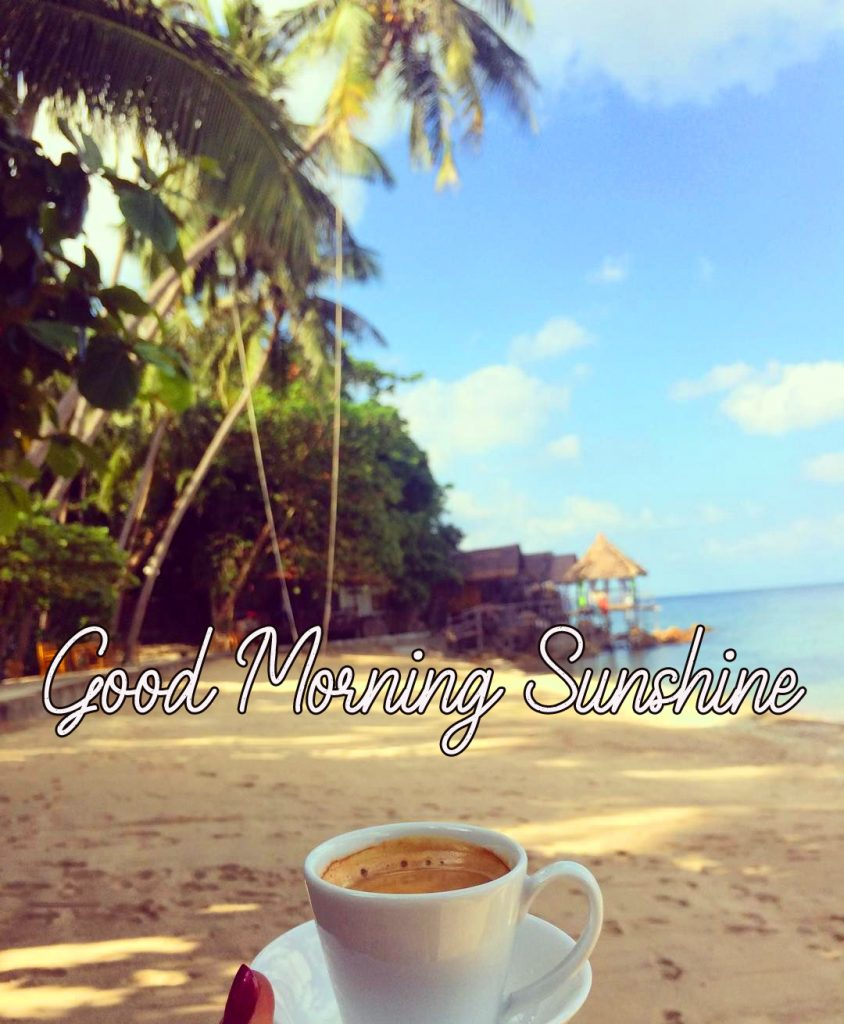 42+ Good Morning Sunshine Wallpapers and Images