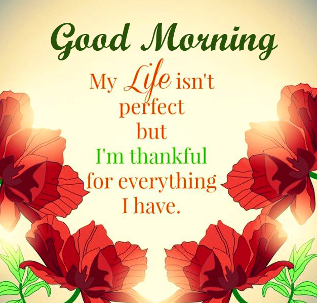 Floral Quotes Good Morning Image