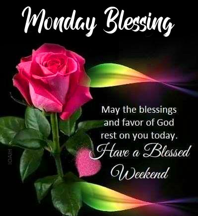 Flower with Monday Blessing Wish