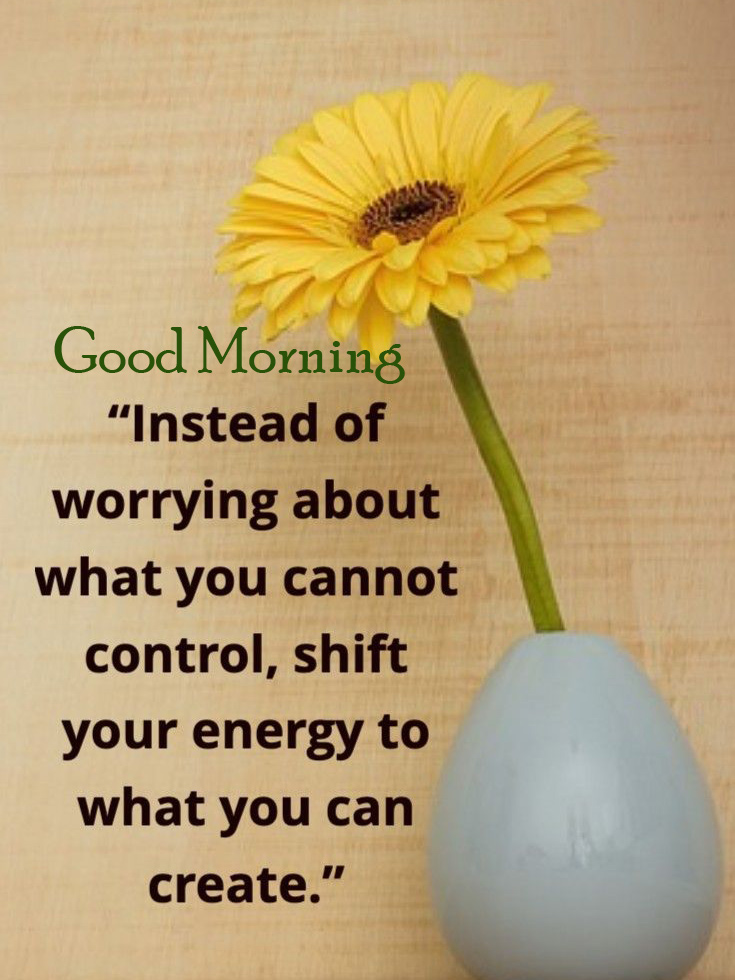 Flower with Quotes and Good Morning Wish HD