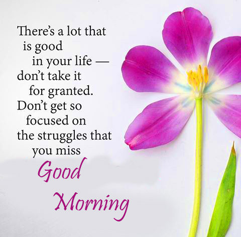 Flower with Quotes and Good Morning Wish