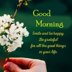 43+ Good Afternoon Quotes