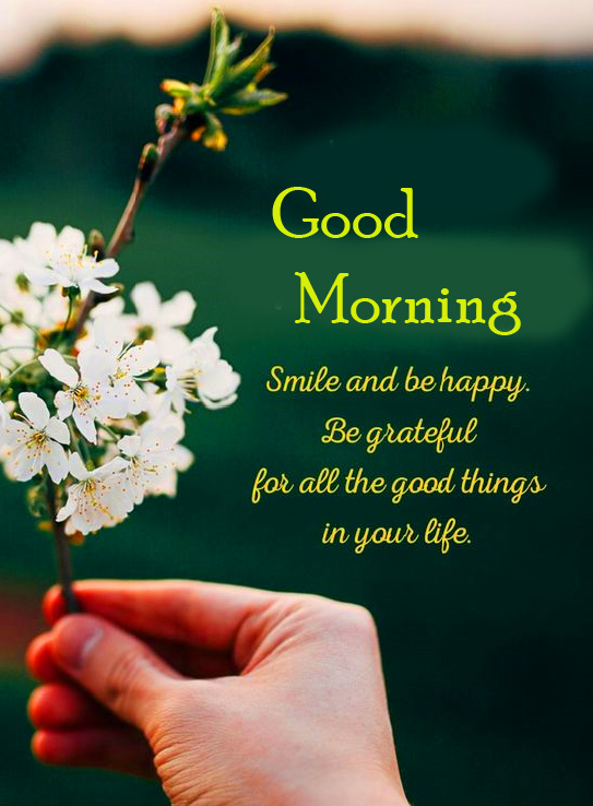 Full HD Quotes Good Morning Picture