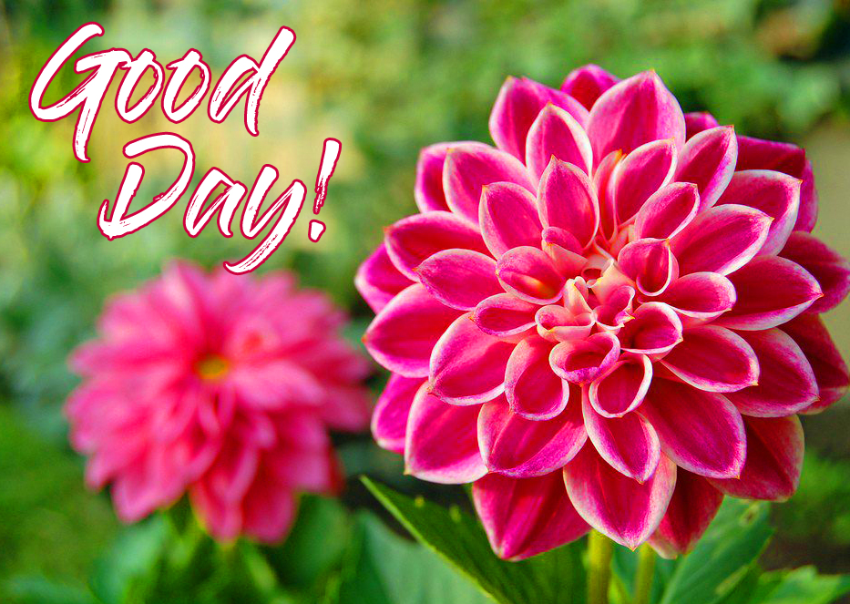 Good Day with Flowers Pic