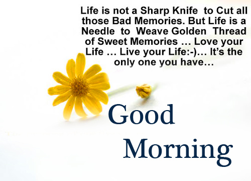 Good Morning Motivational Quotes with Flowers