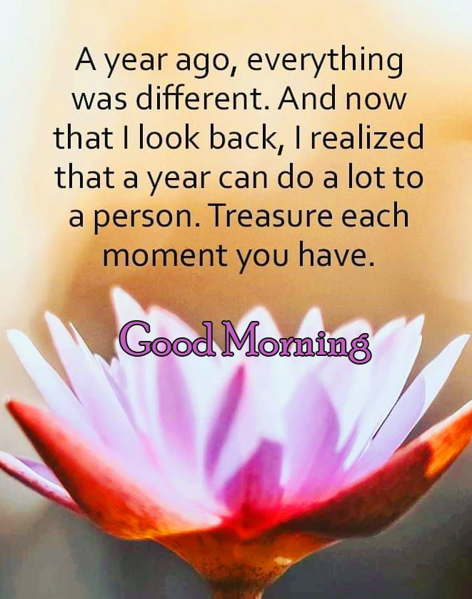 Good Morning Quotes Wish Pic