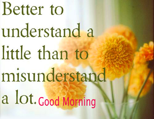 Good Morning Quotes with Flowers Pic