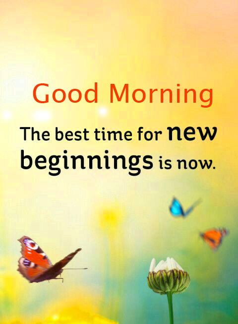 Good Morning Wish with HD Quotes