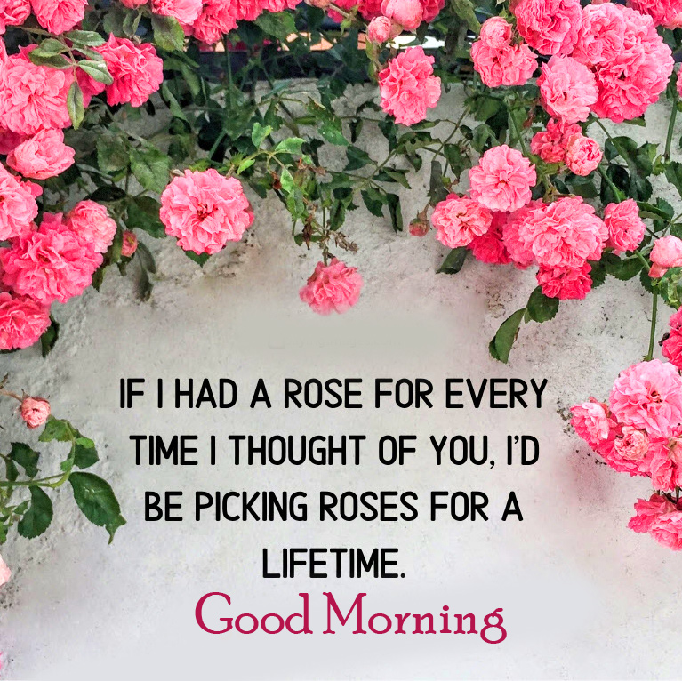 Good Morning Wish with Roses Quotes