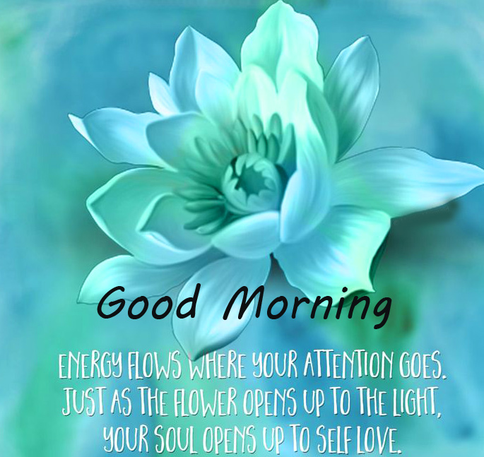 Good Morning with Beautiful Quotes Image