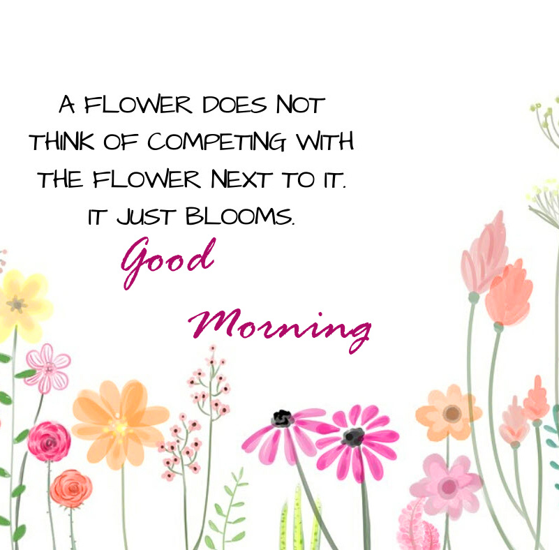 Good Morning with Flower Quotes