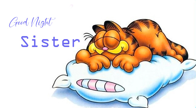 Good Night Sister Cartoon Picture