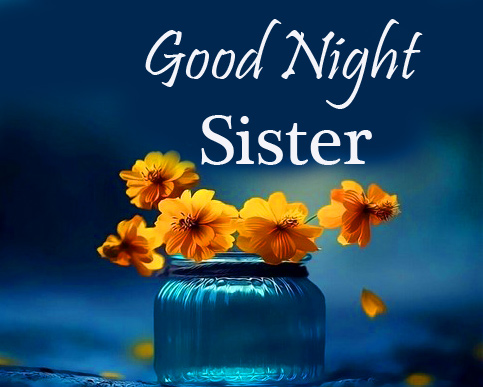Good Night Sister Message with Flowers
