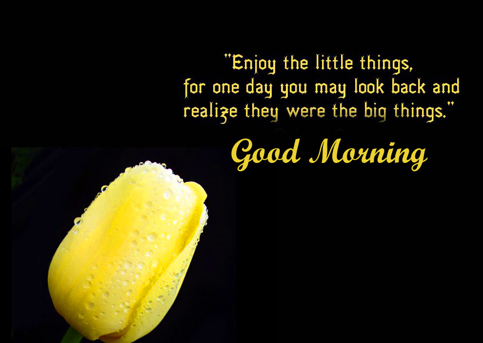 Happiness Motivational Quotes Good Morning Image