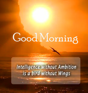 Happy Quotes Good Morning Image