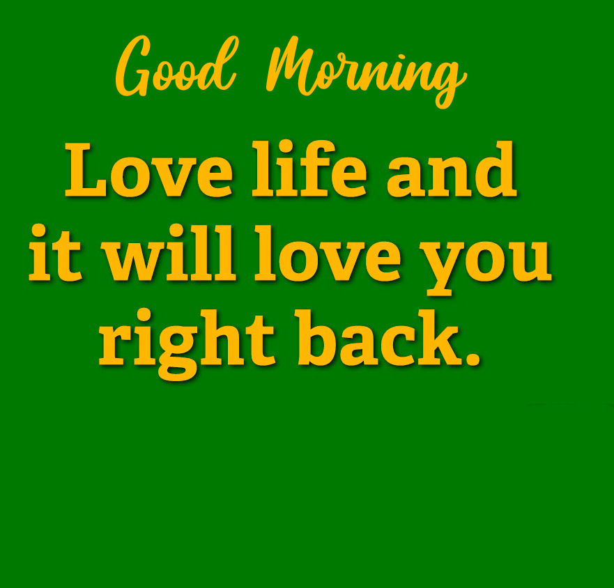Love Life Quotes Good Morning Image