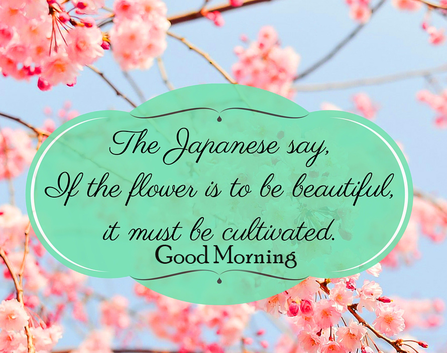 Lovely Japanese Flowers Quotes Good Morning Image