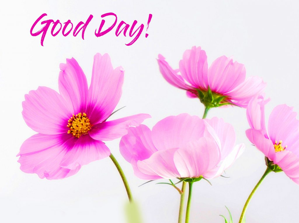 58+ Good Day! Pics and Photos HD Free Download