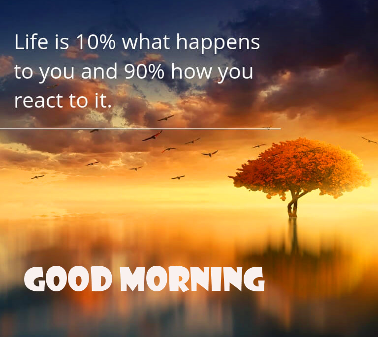 Positive Quotes Good Morning Wallpaper