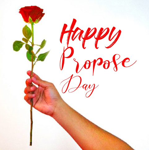 Red Rose with Happy Propose Day Message